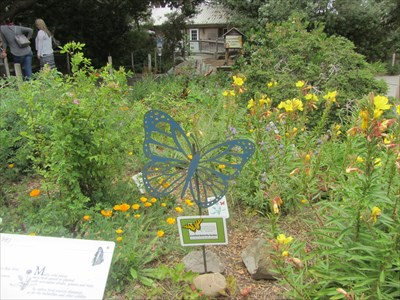 Superbe San Francisco Zoo Butterfly Garden   San Francisco, CA   Butterfly Gardens  On Waymarking.com