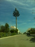 Image for Pine tree cell tower in Cabanas de Tavira, Portugal