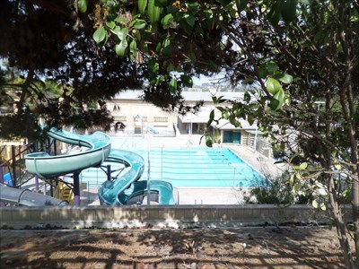 Carmel Valley community Swimming Pool - San Diego, CA ...