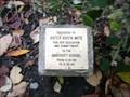 Image for Sister Krista Mote - Haddonfield, NJ