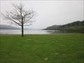 Image for Llyn Tegid (Bala Lake) Llangywer, Gwynedd, Wales