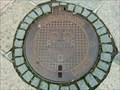 Image for Manhole Cover - Pisek, Czech Republic