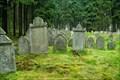 Image for Židovský hrbitov - Drmoul / Jewish cemetery - Drmoul
