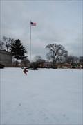 Image for Dual Guns - Mt.Auburn Cemetery, IL