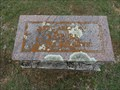 Image for FIRST Burial in Eakins Cemetery - Ponder, TX