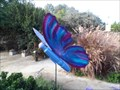 Image for Carmelita the Butterfly  -  Encinitas, CA