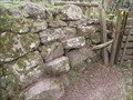 Image for Granite Steps, footpath near Sheepstor Village, SW Dartmoor.