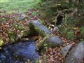 Image for Small Stone Bridge, Near Babeny, Central Dartmoor, Devon