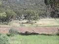 Image for Pichi Richi Cemetery, SA,  Australia