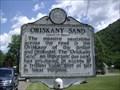 Image for Oriskany Sand
