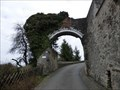 Image for Ruine der Burg Daun - Daun, RP, Germany
