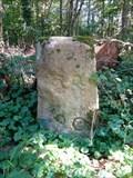 Image for Borne 90, forêt de Fontainebleau - France