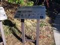 Image for Rock Canyon Plants & Animals, Provo, UT