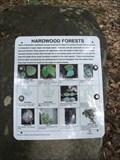 Image for Muskoka's Hardwood Forests