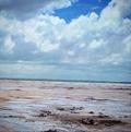 Image for Salt Plains Selenite Crystals