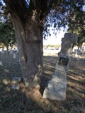 Image for Daniel D. Boone - Smyrna Cemetery - Near Sunset, TX
