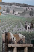 Image for Les chevaux - Chessy les mines - Rhône