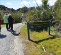 Image for Swamp Forest Walk - West Coast, New Zealand