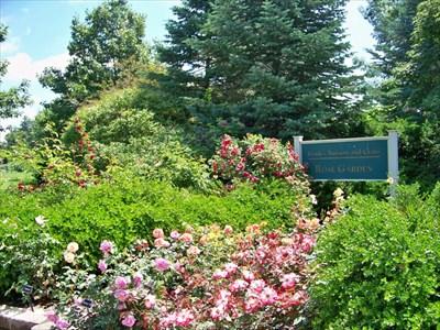 Franks Nursery And Crafts Rose Garden E Lansing Mi Gardens On Waymarking