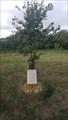 Image for Diamond Jubilee Oak Tree - Tonge Pond - Tonge, Kent