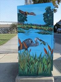 Slough Birds, Side View, Watsonville, CA