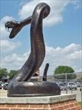 Image for Rattlesnake - Navasota, TX