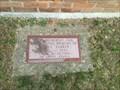 Image for Sidney Parker Memorial Oak - Simcoe, ON
