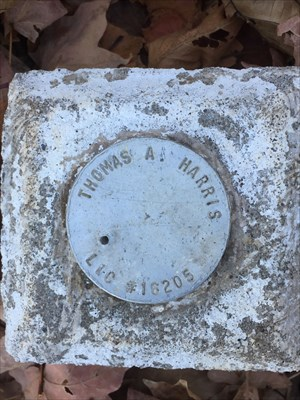 Picture of round survey marker in cement.
