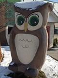 Image for Big Owl