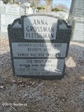 Image for 104 - Anna Grossman Fleishman - Boston, MA