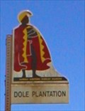 "Image for ""DOLE PLANTATION""  O'ahu"