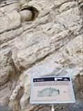 Image for Morrison Formation - Morrison, CO