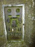 Image for Flush Bracket, Hartlebury Common, Worcestershire, England