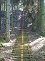 Image for Waldtreppe - Tecklenburg, NW, Germany