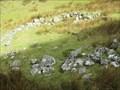 Image for Hut Circle - Twll Pant-hiriol, Llefn, Llanllechid, Gwynedd, Wales