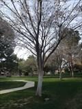 Image for Bernice M . Reid - Crowe Park - Boulder City, NV