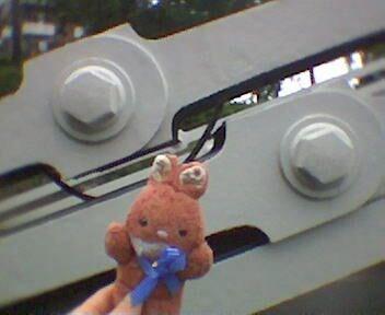 Max at Clifton Suspension Bridge - BRISTOL - edition - UK