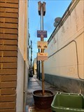 Image for Bat Alley - Palestine, TX