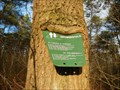 Image for Sign eating tree - Schuitwater, Netherlands
