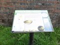 Image for Weaver Way Freshwater Mussels - Nantwich, UK