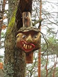 Image for Round Wood Face in the Palatinate Forest - RLP / Germany
