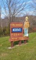 Image for Smokey Bear Sign - Little Buffalo State Park - Newport PA