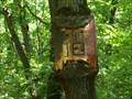Image for Sign Eating Tree - Thompson Ledges Park, Thompson, Ohio