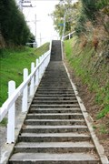 Image for Falcon Street Stairs — Dunedin, New Zealand