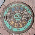Image for FAST Cheonan Themed Manhole Cover  -  Cheonan, Korea
