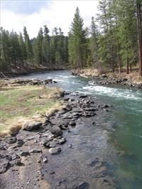 Upper Deschutes River - Pringle Falls Campground - LaPine, Oregon