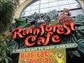 Image for Rainforest Cafe - San Francicsco, CA