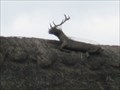 Image for Stag on the Roof - North Arms, Main Street, Wroxton, Oxfordshire, UK