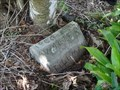 Image for Walter R. Tillman, Fort Denaud Cemetery, Fort Denaud, Florida, USA