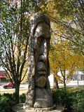 Image for #9 Cherokee Chieftain/ Cleveland Tennessee